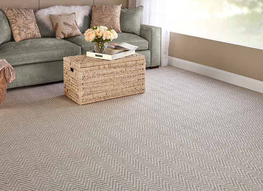 Living room with a neutral color scheme and carpet with zig zags